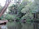 Upper Coomera River
