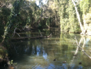 Hilliards Creek 3.jpg