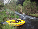 Upper Coomera River Rapids