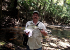 FNQ Jungle Perch