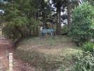 Charlie Morland camping area.jpg