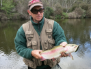 Threadbo River Rainbow Trout