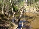 Weir River