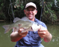 Bass are common in the Maroochy River
