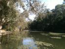 Hilliards Creek 1.jpg