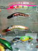 Old Eddy Lures