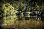 Albert River - Qld