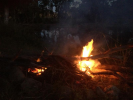 Campfire over cod water