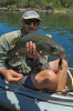 Eastern Cod on the Clarence